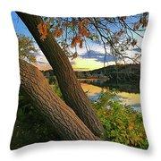 Horn Pond Throw Pillow