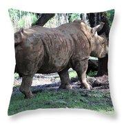 Horn Rubbing Throw Pillow