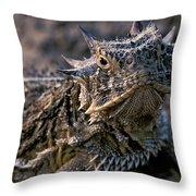 Horn Toad Throw Pillow