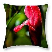 Horned Blossom Throw Pillow