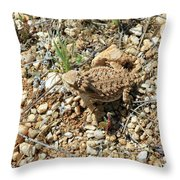 Horned Lizard Throw Pillow