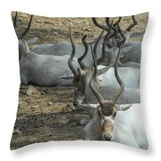 Horney Throw Pillow