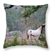 Horse 019 Throw Pillow