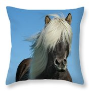 Horse And Blue Sky Throw Pillow