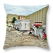 Horse And Buggie Throw Pillow