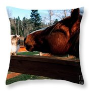 Horse And Cat Nuzzle Throw Pillow