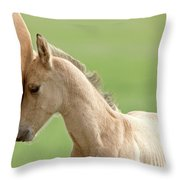 Horse And Colt Throw Pillow
