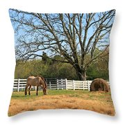 Horse And Hay Throw Pillow