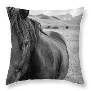 Horse And Sawtooth Mountains Throw Pillow