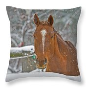 Horse And Snowflakes Throw Pillow