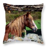 Horse At Stone Wall Throw Pillow