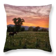 Horse At Sunset Throw Pillow