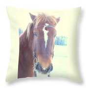 Horses Use Complex Facial Expressions Nearly Identical To Humans  Throw Pillow by Hilde Widerberg