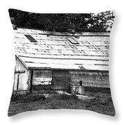 Horse Barn Now Throw Pillow