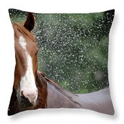 Horse Bath I Throw Pillow