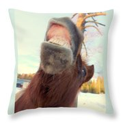 Horse Facial Expressions Are Nearly Identical To Those Of Humans Throw Pillow
