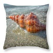 Horse Conch Throw Pillow