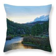 Horse Creek Throw Pillow