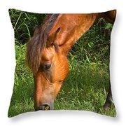 Horse Cuisine  Throw Pillow