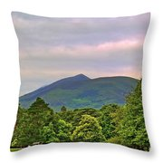 Horse Drawn Carriage At Muckross House Throw Pillow