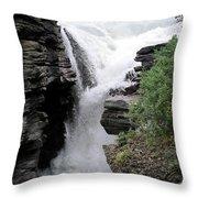 Horse Falls  Throw Pillow
