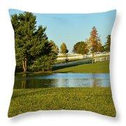Horse Farm Pond Throw Pillow