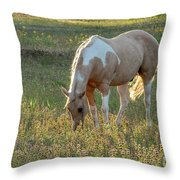 Horse Feeding In Grass Farm With Sunset Light From The Left Throw Pillow