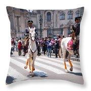 Horse Guard At Parade Throw Pillow