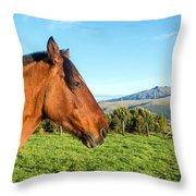 Horse Head Closeup Throw Pillow