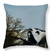 Horse Head In The Winter Throw Pillow