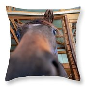 Horse Hello Throw Pillow