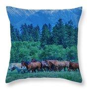 Horse Herd Throw Pillow