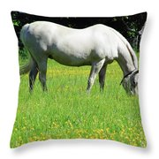 Horse In A Field Of Flowers Throw Pillow