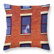 Horse In An Upstairs Window Throw Pillow