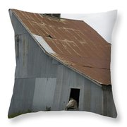Horse In Barn Throw Pillow