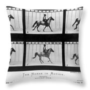 Horse In Motion, 1878 Throw Pillow