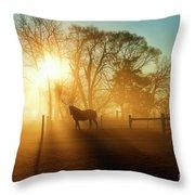 Horse In The Fog At Dawn Throw Pillow