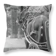 Horse In The Quarter Throw Pillow