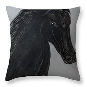 Horse Named Misty Throw Pillow