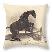 Horse Jumping A Barrier Throw Pillow