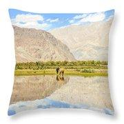 Horse On Lake Throw Pillow