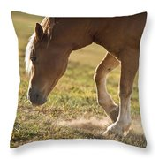 Horse Pawing In Pasture Throw Pillow by Steve Gadomski