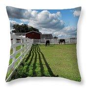 Horse Pen Throw Pillow