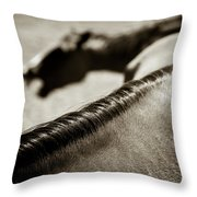 Horse Play Throw Pillow