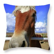 Horse Portrait Throw Pillow