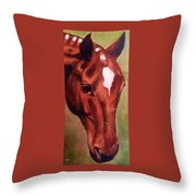 Horse Portrait Horse Head Red Close Up Throw Pillow