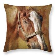 Horse Portrait II Throw Pillow