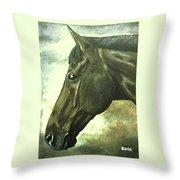 horse portrait PRINCETON bright light Throw Pillow