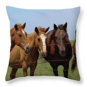 Horse Quartet Throw Pillow