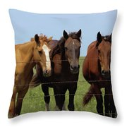 Horse Quintet Throw Pillow